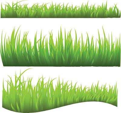 Green Park Grass.eps
