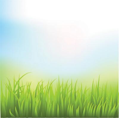 Green Field Grass.eps