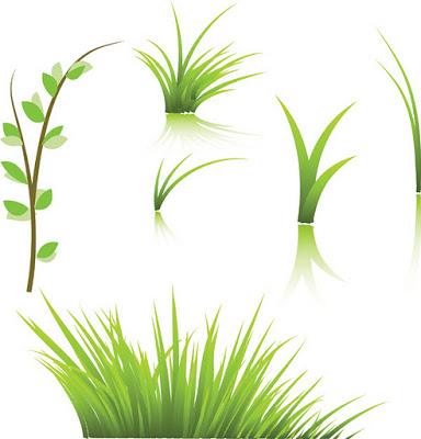 Green Home Grass.eps