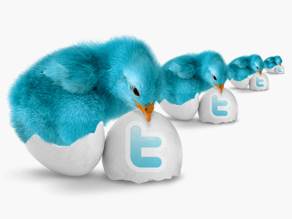 How To Grow Your Twitter Follower Instantly Free Of Cost?