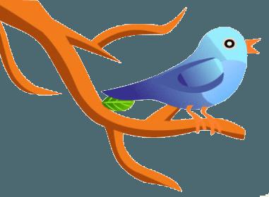 Add ''Seated Twitter Bird'' Widget To Blog & Website