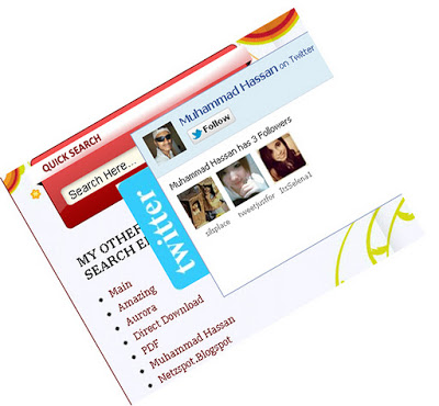 New Stylish Twitter Follow Box With Smooth J-Query POP OUt Effect In Blog And Website