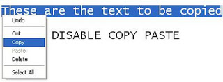 How To Disable Copying Text From Blog And Website?