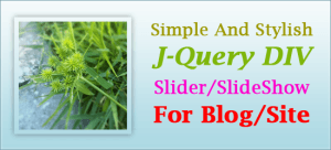 Simple-And-Stylish-J-Query-DIV-Slider-SlideShow