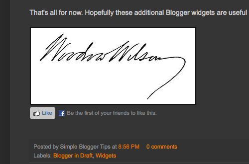 How To Add Author Signature Into Every Blog Posts?