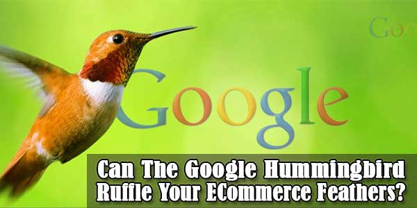 Can The Google Hummingbird Ruffle Your ECommerce Feathers?