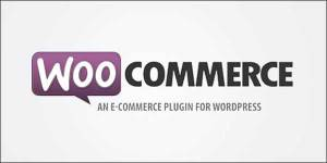 How To Add WooCommerce Sample Data In Your WooCommerce Site ...