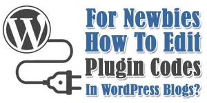 For-Newbies-How-To-Edit-Plugin-Codes-In-WordPress-Blogs