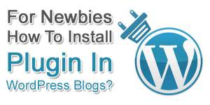 For-Newbies-How-To-Install-Plugin-In-WordPress-Blogs