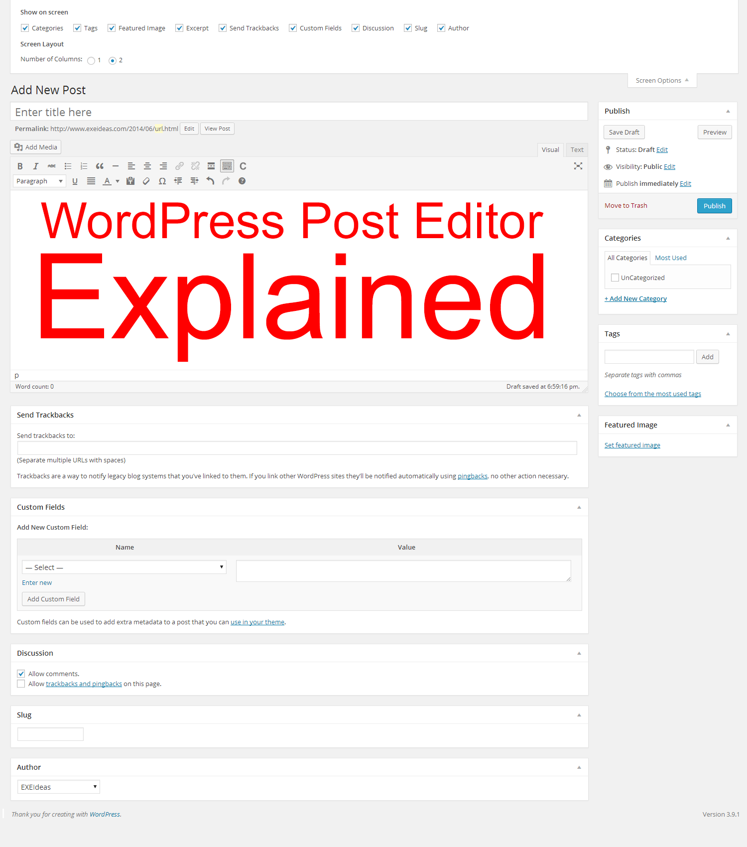WordPress Post Editor Explained