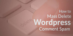 How-To-Mass-Delete-WordPress-Comment-Spam