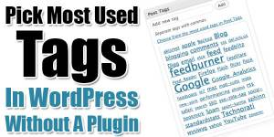 Pick-Most-Used-Tags-In-WordPress-Without-A-Plugin