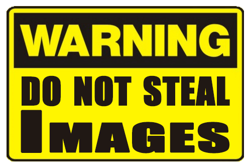 Warning-Do-Not-Steal-Images