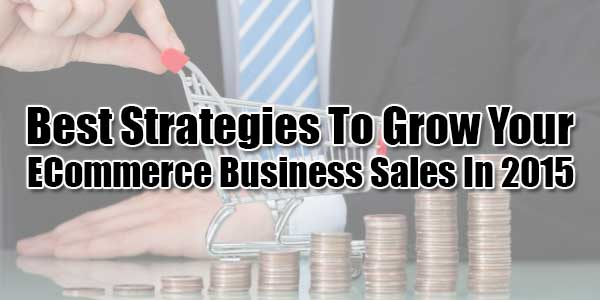 Best-Strategies-To-Grow-Your-ECommerce-Business-Sales-In-2015