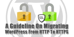 A-Guideline-On-Migrating-WordPress-From-HTTP-To-HTTPS
