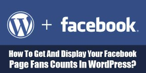 How-To-Get-And-Display-Your-Facebook-Page-Fans-Counts-In-WordPress