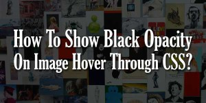How-To-Show-Black-Opacity-On-Image-Hover-Through-CSS