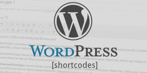 How-To-Write-Create-And-Use-Custom-Shortcodes-In-WordPress