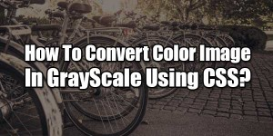 How-To-Convert-Color-Image-In-GrayScale-Using-CSS
