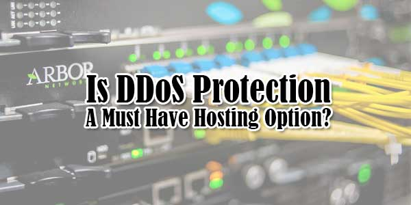 -Is-DDoS-Protection-A-Must-Have-Hosting-Option