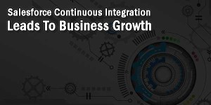 Salesforce-Continuous-Integration-Lead-To-Business-Growth