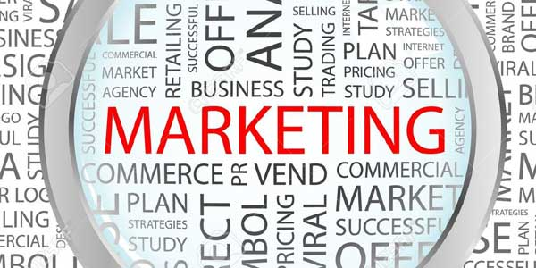 Magnify-Marketing