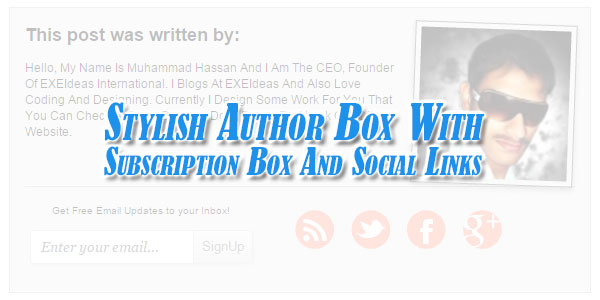 stylish author box with subscription box and social links exeideas let 39 s your mind rock. Black Bedroom Furniture Sets. Home Design Ideas