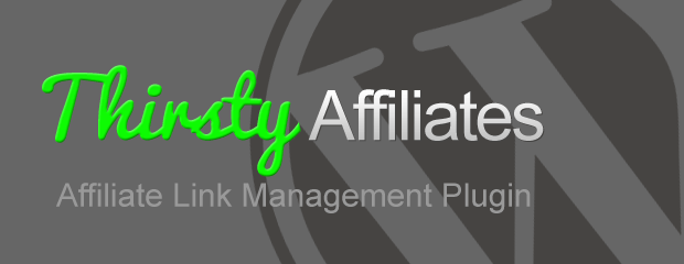 Bolder Marketing With Thirsty Affiliates