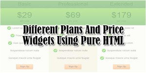 Different-Plans-And-Price-Widgets-Using-Pure-HTML