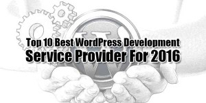 Top-10-Best-WordPress-Development-Service-Provider-For-2016