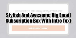 Stylish-And-Awesome-Big-Email-Subscription-Box-With-Intro-Text