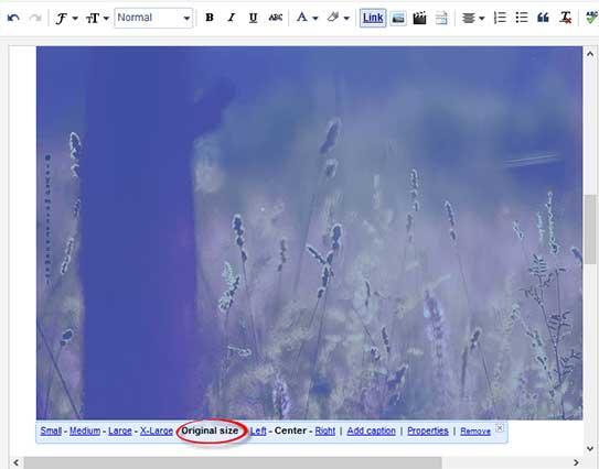 Blogger-Image-Insert-Window