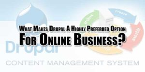 What-Makes-Drupal-A-Highly-Preferred-Option-For-Online-Business