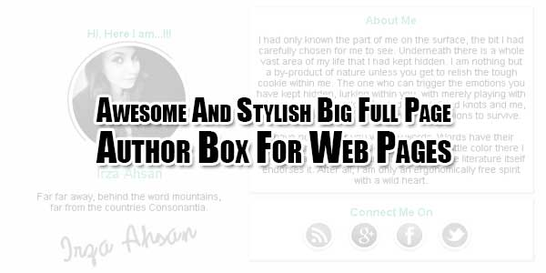 Awesome-And-Stylish-Big-Full-Page-Author-Box-For-Web-Pages