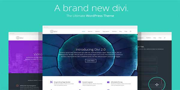 divi-one-of-the-fastest