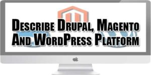 describe-drupal-magento-and-wordpress-platform