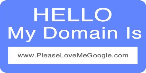 Hello-My-Domain-Is-Please-Love-Me-Google