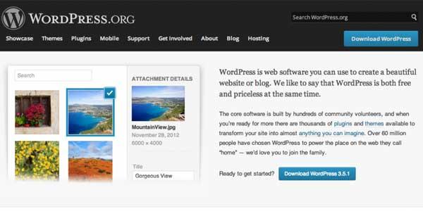 WordPress-CMS-Platform