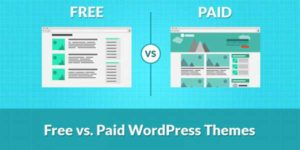 Free-Vs-Paid-WordPress-Theme