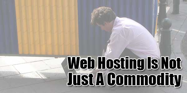 Web-Hosting-Is-Not-Just-A-Commodity
