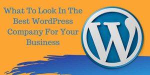 What-To-Look-In-The-Best-WordPress-Company-For-Your-Business
