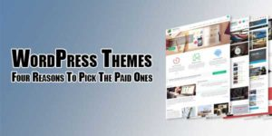 WordPress-Themes--Four-Reasons-To-Pick-The-Paid-Ones