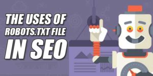 The-Uses-Of-Robots.Txt-File-In-SEO