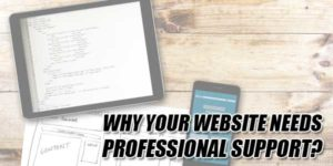 Why-Your-Website-Needs-Professional-Support
