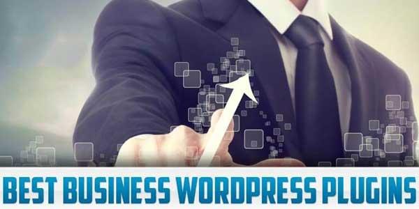 Best-Business-WordPress-Plugin
