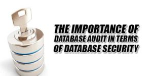 The-Importance-Of-Database-Audit-In-Terms-Of-Database-Security