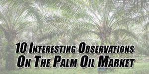 10-Interesting-Observations-On-The-Palm-Oil-Market