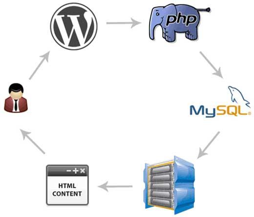 WordPress-WPDB-Queries