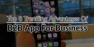 Top-8-Trending-Advantages-Of-B2B-App-For-Business