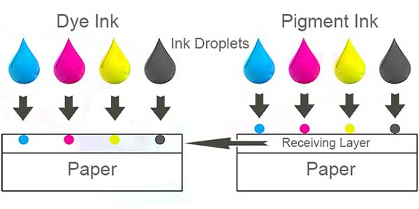 Difference-Between-Pigment-Based-Ink-Cartridges-And-Dye-Based-Ink-Cartridges